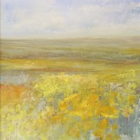 Fields of daffodils, Lelant by Lucy Dove Wright