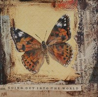 Going out into the world by Amanda Hoskin