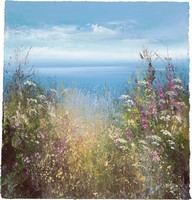 Wild flowers on the North Coast by Amanda Hoskin