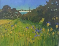 Agapanthus morning, Isles of Scilly by Andrea Stokes