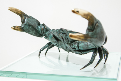 Defiant crab by Shelley Anderson
