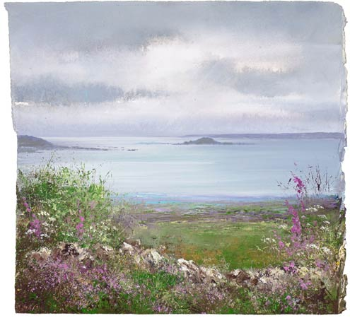 Foxgloves watch over the Eastern Isles, Scillies by Amanda Hoskin