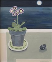 Auricula in moonlight by Gemma Pearce