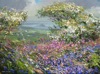 Mayblossom and flowers, Boskednan by Mark Preston