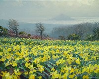 Early spring, Ludgvan by Mark Preston