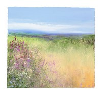 Fields of Flowers near St Ives�  by Amanda Hoskin