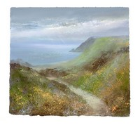 Late Afternoon Light, Kynance Cove  by Amanda Hoskin
