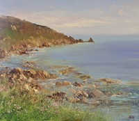 Beautiful Day at Lamorna Cove  by Amanda Hoskin