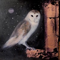 Midnights song by Catherine Hyde