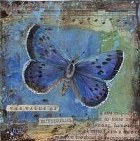 The value of butterflies by Amanda Hoskin