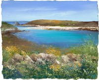 Early summer St Agnes by Amanda Hoskin