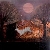 The dreaming garden by Catherine Hyde