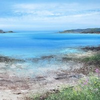 Summer view towards Cromwells Castle, Tresco by Amanda Hoskin