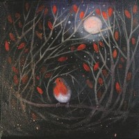 The Christmas robin by Catherine Hyde