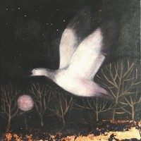 The flame of evening by Catherine Hyde