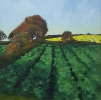 Cornish spring fields by Andrea Stokes