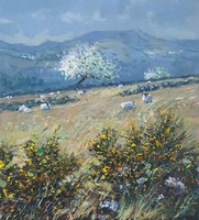 Gorse, sheep and May Blossom by Robert Jones
