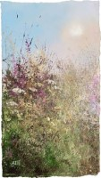 Summer days amongst the wild flowers by Amanda Hoskin