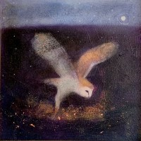 Lightly through the darkness by Catherine Hyde