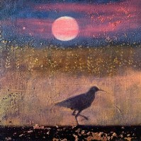 The Curlew's call by Catherine Hyde