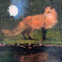 The midnight fox by Catherine Hyde