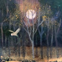 The whisper of wings by Catherine Hyde