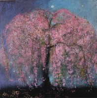 The wild Cherry tree by Catherine Hyde