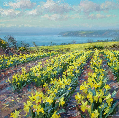 Fields of daffodils, Ludgvan by Mark Preston