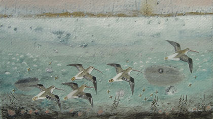 Curlews in the Rain   by Ingebjorg Smith