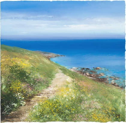 Summer flowers on the path to Mousehole by Amanda Hoskin