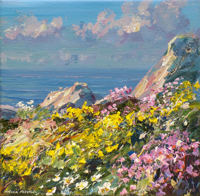Sunlit flowers, Treen Cliff by Mark Preston