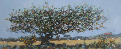 Wind blown blackthorn by Robert Jones