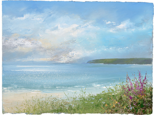 Summer Flowers at Sennen by Amanda Hoskin